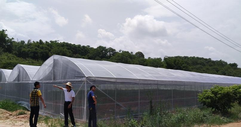 防虫网大棚-煌城温室防虫大棚图片